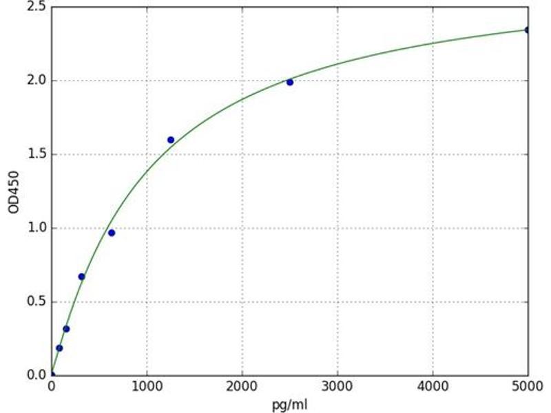 CASP8 Associated Protein 2 (CASP8AP2) ELISA Kit