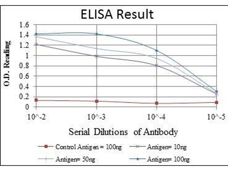 ELISA image for anti-Jun Proto-Oncogene (JUN) antibody (ABIN4880344)