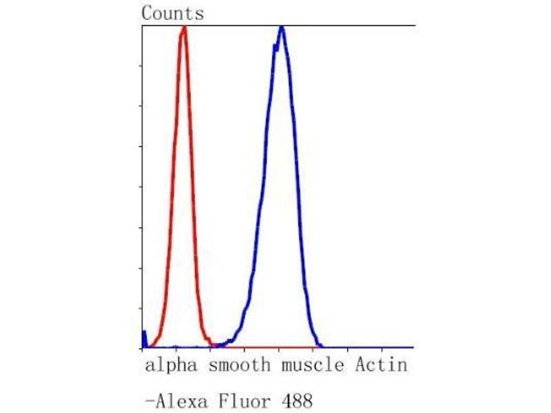 Flow Cytometry (FACS) image for anti-Actin, alpha 2, Smooth Muscle, Aorta (ACTA2) (AA 1-200) antibody (ABIN5945116)
