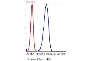 Flow Cytometry (FACS) image for anti-Actin, alpha 2, Smooth Muscle, Aorta (ACTA2) (AA 1-200) antibody (ABIN5945116)