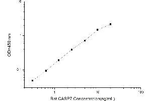 Image no. 2 for Caspase 7, Apoptosis-Related Cysteine Peptidase (CASP7) ELISA Kit (ABIN1113996)