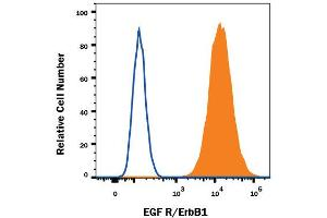 Flow Cytometry (FACS) image for anti-Epidermal Growth Factor Receptor (EGFR) (AA 25-645) antibody (Biotin) (ABIN4899924)