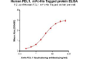 Image no. 1 for CD274 (PD-L1) protein (mFc Tag,His tag) (ABIN6961096)