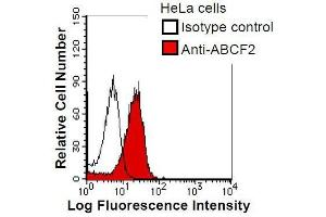 Image no. 1 for anti-ATP-Binding Cassette, Sub-Family F (GCN20), Member 2 (ABCF2) antibody (ABIN933116)