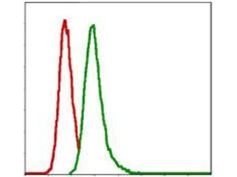 Flow Cytometry (FACS) image for anti-Glucose-6-Phosphate Dehydrogenase (G6PD) antibody (ABIN4880305)