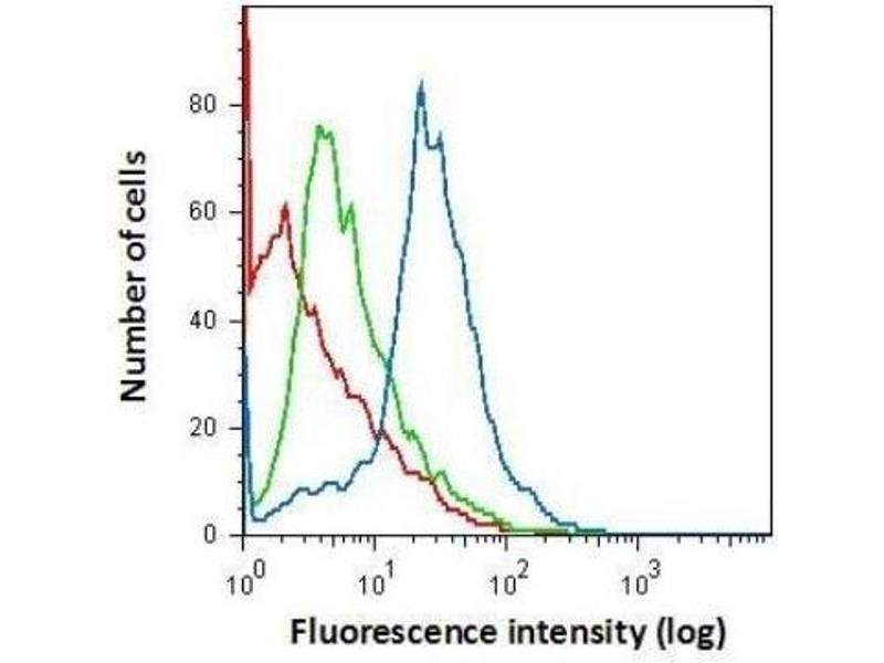 Flow Cytometry (FACS) image for anti-Allograft Inflammatory Factor 1 (AIF1) (Center) antibody (ABIN4278832)