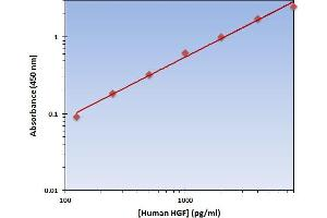Image no. 1 for Hepatocyte Growth Factor (Hepapoietin A, Scatter Factor) (HGF) ELISA Kit (ABIN1380034)