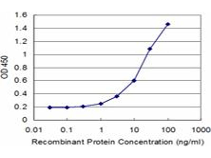 ELISA image for anti-Cryptochrome 2 (Photolyase-Like) (CRY2) (AA 141-231), (partial) antibody (ABIN514620)