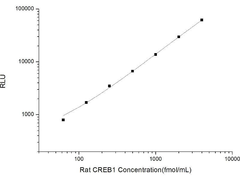 cAMP Responsive Element Binding Protein 1 (CREB1) CLIA Kit