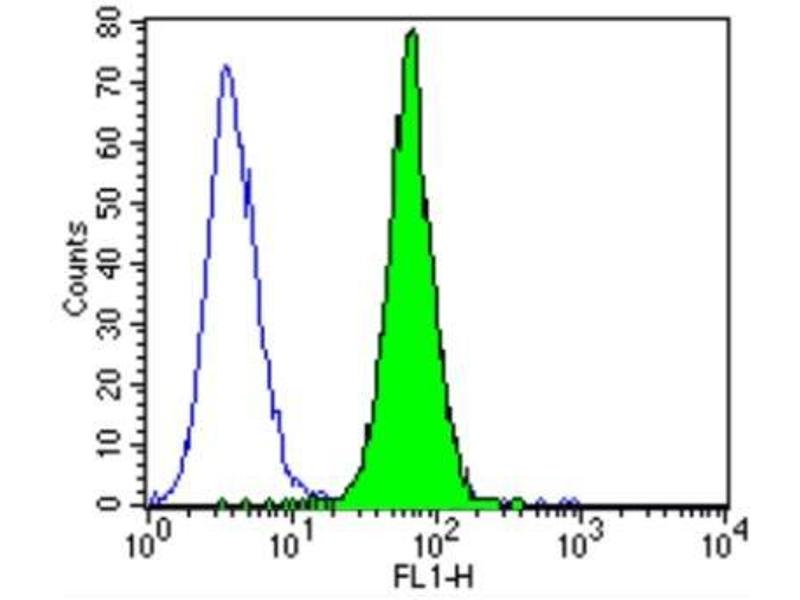 Flow Cytometry (FACS) image for anti-ERBB4 antibody (V-Erb-A erythroblastic Leukemia Viral Oncogene Homolog 4 (Avian)) (ABIN267015)