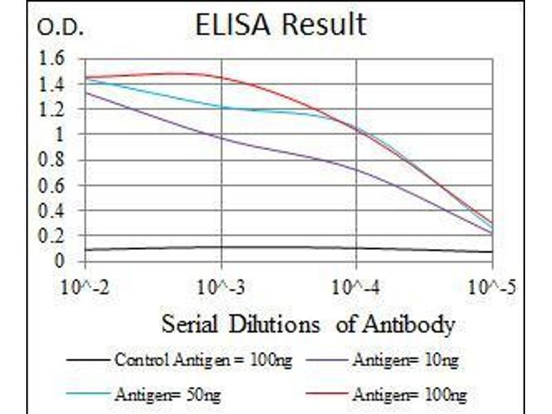 ELISA image for anti-CCAAT/enhancer Binding Protein (C/EBP), alpha (CEBPA) antibody (ABIN969048)