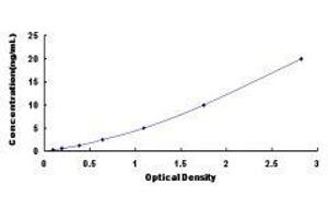 Image no. 1 for Programmed Cell Death 6 Interacting Protein (PDCD6IP) ELISA Kit (ABIN418576)