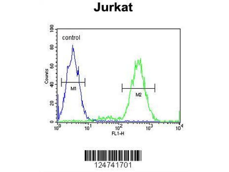 Flow Cytometry (FACS) image for anti-IMP2L (AA 81-109), (Center) antibody (ABIN653951)