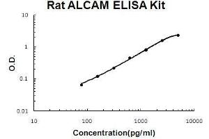 Image no. 1 for Activated Leukocyte Cell Adhesion Molecule (ALCAM) ELISA Kit (ABIN5510729)