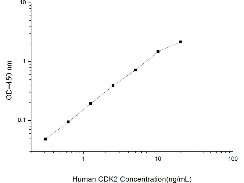 Cyclin-Dependent Kinase 2 (CDK2) ELISA Kit (2)