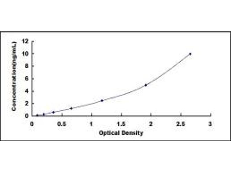 Coagulation Factor C Homolog, Cochlin (Limulus Polyphemus) (COCH) ELISA Kit
