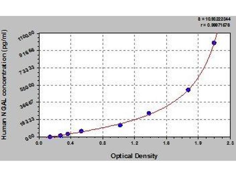 ELISA image for Lipocalin 2 (LCN2) ELISA Kit (ABIN365998)