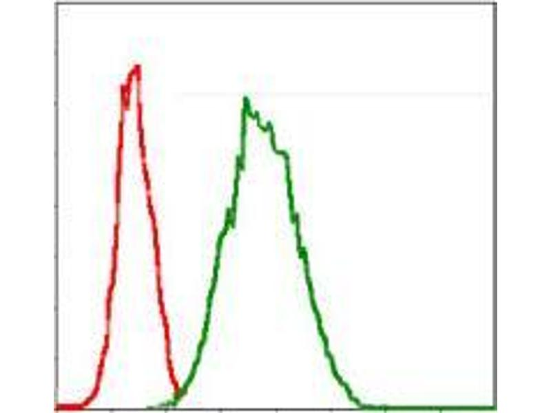 Flow Cytometry (FACS) image for anti-Glucose-6-Phosphate Dehydrogenase (G6PD) antibody (ABIN969162)
