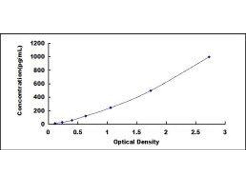 Heparin-Binding EGF-Like Growth Factor (HBEGF) ELISA Kit