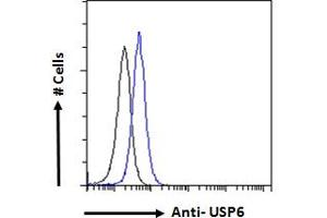Image no. 1 for anti-Ubiquitin Specific Peptidase 6 (USP6) (AA 142-155) antibody (ABIN1019674)