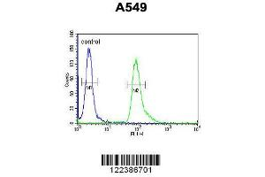 Flow Cytometry (FACS) image for anti-ABHD12 antibody (Abhydrolase Domain Containing 12) (AA 40-66) (ABIN652851)