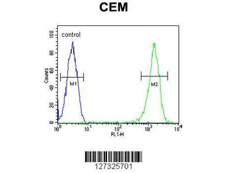 Flow Cytometry (FACS) image for anti-Reticulocalbin 3, EF-Hand Calcium Binding Domain (RCN3) (AA 134-163), (Center) antibody (ABIN651973)