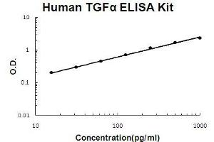 ELISA image for TGFA ELISA Kit (Transforming Growth Factor, alpha) (ABIN921075)