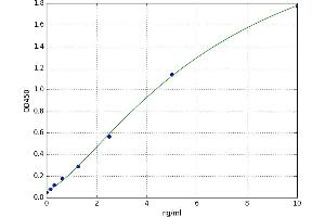 Image no. 1 for Growth Differentiation Factor 6 (GDF6) ELISA Kit (ABIN5520658)