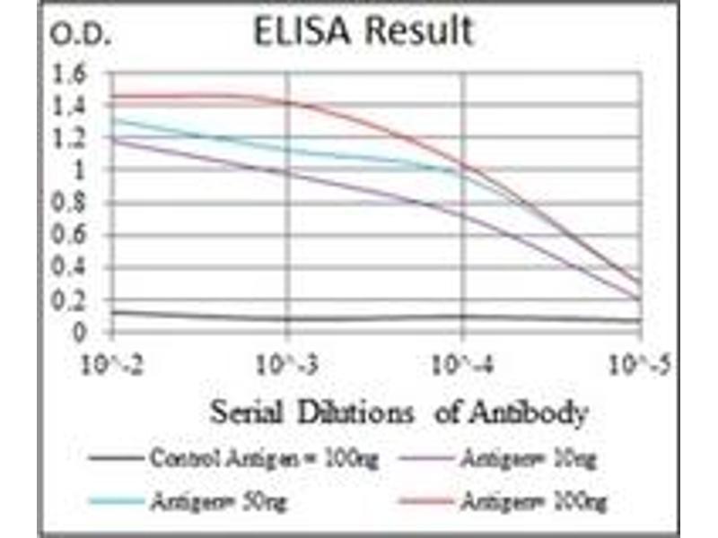 ELISA image for anti-Tubulin, alpha 8 (TUBA8) antibody (ABIN1109365)