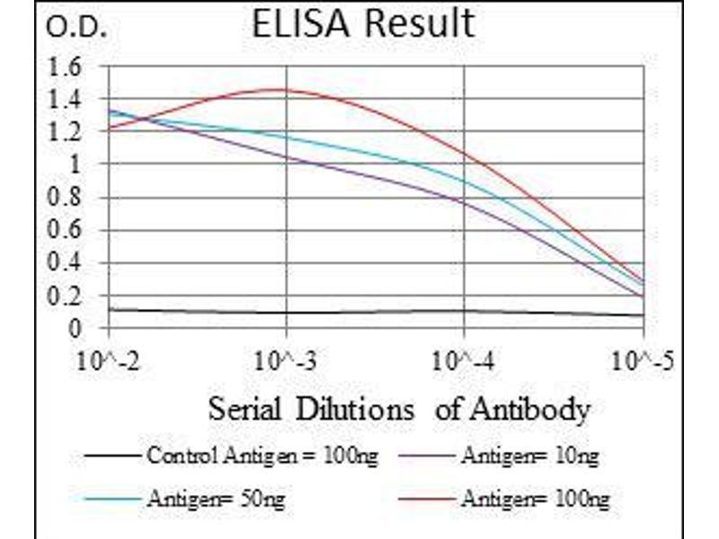 ELISA image for anti-Epsin 1 (EPN1) (AA 106-254) antibody (ABIN4881196)