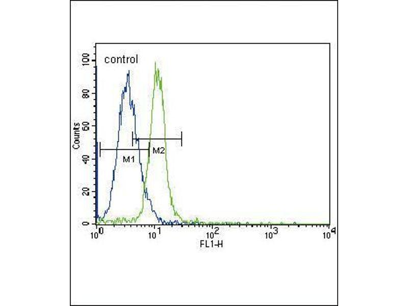 Flow Cytometry (FACS) image for anti-JAK2 antibody (Janus Kinase 2) (C-Term) (ABIN2489348)