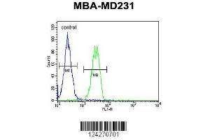 Flow Cytometry (FACS) image for anti-B4GALT6 antibody (UDP-Gal:betaGlcNAc beta 1,4 Galactosyltransferase, Polypeptide 6) (AA 319-346) (ABIN654654)