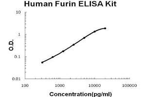 Image no. 1 for Furin (Paired Basic Amino Acid Cleaving Enzyme) (FURIN) ELISA Kit (ABIN1672834)