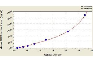 Image no. 1 for cAMP Responsive Element Binding Protein 1 (CREB1) ELISA Kit (ABIN6975252)