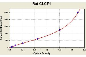 Image no. 1 for Cardiotrophin-Like Cytokine Factor 1 (CLCF1) ELISA Kit (ABIN1113970)