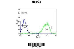Flow Cytometry (FACS) image for anti-Epiregulin antibody (EREG) (AA 137-165) (ABIN650993)