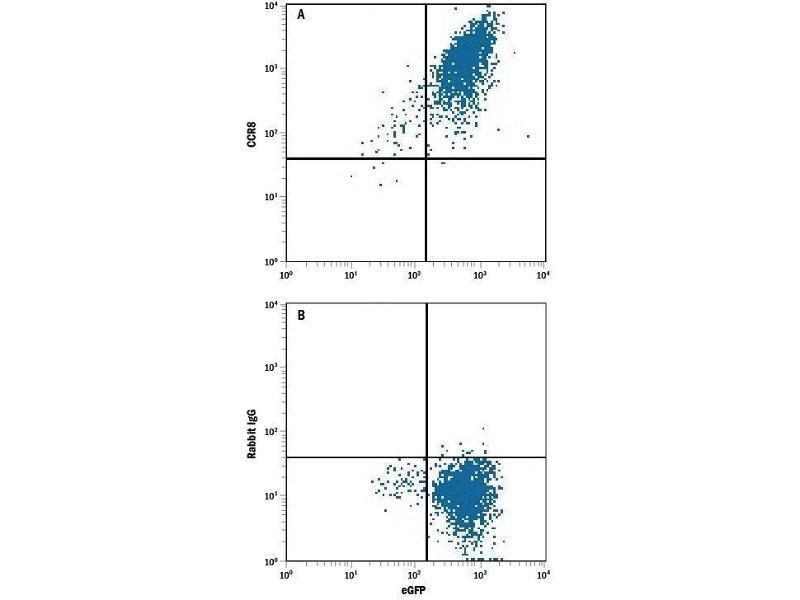 Flow Cytometry (FACS) image for anti-Chemokine (C-C Motif) Receptor 8 (CCR8) antibody (PE) (ABIN4898231)