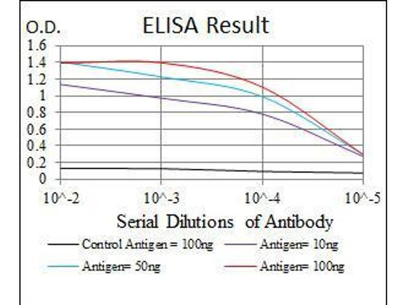 ELISA image for anti-Mitogen-Activated Protein Kinase Kinase 7 (MAP2K7) antibody (ABIN969271)
