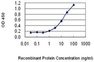 Image no. 1 for anti-Protein Kinase (CAMP-Dependent, Catalytic) Inhibitor beta (PKIB) (AA 2-54) antibody (ABIN1327199)