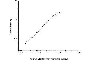 Image no. 1 for Claudin 1 (CLDN1) ELISA Kit (ABIN6962102)