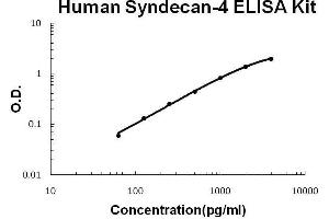 Image no. 1 for Syndecan 4 (SDC4) ELISA Kit (ABIN2859227)