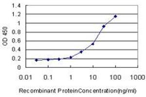 Image no. 3 for anti-Growth Differentiation Factor 11 (GDF11) (AA 310-407) antibody (ABIN523623)