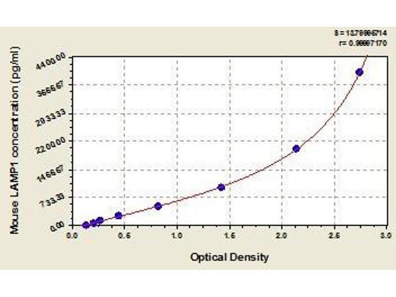 Lysosomal-Associated Membrane Protein 1 (LAMP1) ELISA Kit