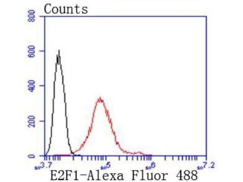 Flow Cytometry (FACS) image for anti-E2F Transcription Factor 1 (E2F1) antibody (ABIN5946229)