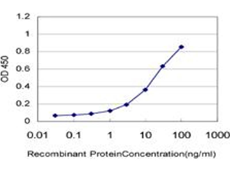 Immunohistochemistry (IHC) image for anti-UDP-GlcNAc:betaGal beta-1,3-N-Acetylglucosaminyltransferase 1 (B3GNT1) (AA 111-211) antibody (ABIN394787)