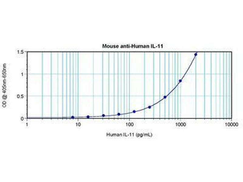 image for anti-IL11 antibody (Interleukin 11) (ABIN465144)
