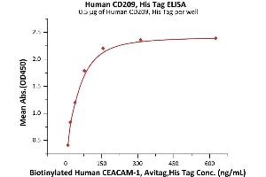 Image no. 2 for CD209 Molecule (CD209) (AA 59-404) protein (His tag) (ABIN6952274)
