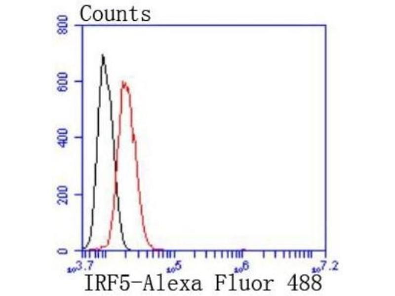 Flow Cytometry (FACS) image for anti-Interferon Regulatory Factor 5 (IRF5) (N-Term) antibody (ABIN5946616)