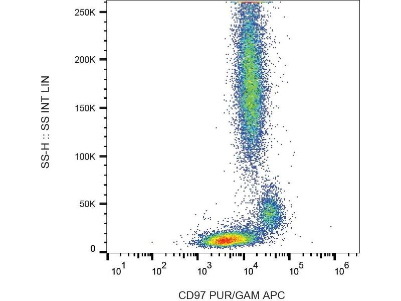 Flow Cytometry (FACS) image for anti-CD97 (CD97) antibody (FITC) (ABIN94253)