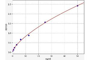 Image no. 1 for Low Density Lipoprotein Receptor-Related Protein 2 (LRP2) ELISA Kit (ABIN6968350)